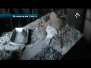 В Волгоградской области задержали безумца, который устроил поджог в психбольнице