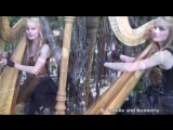 SMOKE ON THE WATER (Deep Purple) Harp Twins - Camille and Kennerly HARP ROCK_MET