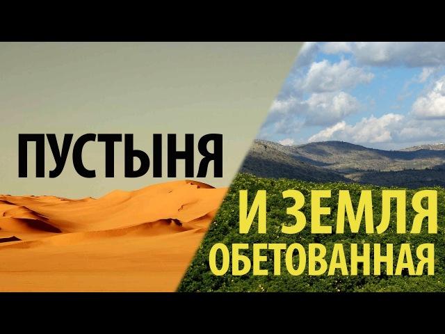 Пустыня и земля обетованная - Олег Артемьев (Титу 213)