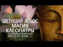 Магия Клеопатры Урок 2 Цветущий лотос АLMA