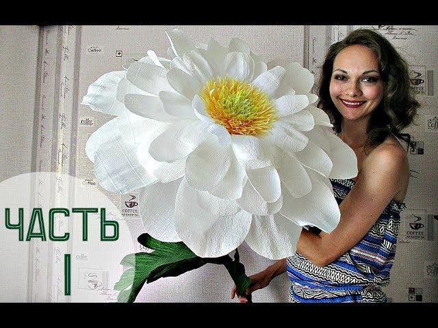 Чувствую себя Дюймовочкой :) Огромные цветы. 1. English subtitles)