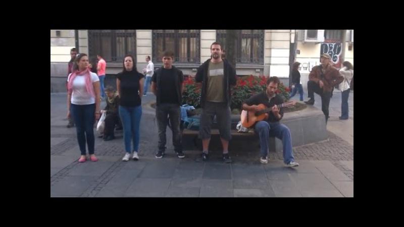 Сербы ПОТРЯСНО ПОЮТ русские песни! Это нельзя пропустить! | Срби одлично певају руске песме!
