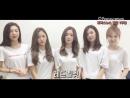160723 Red Velvet @ Поздравительные сообщение к первой годовщине Focusnews