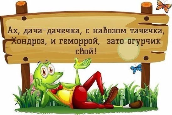 https://pp.userapi.com/c637220/v637220142/49147/DrjQVT7-EIQ.jpg