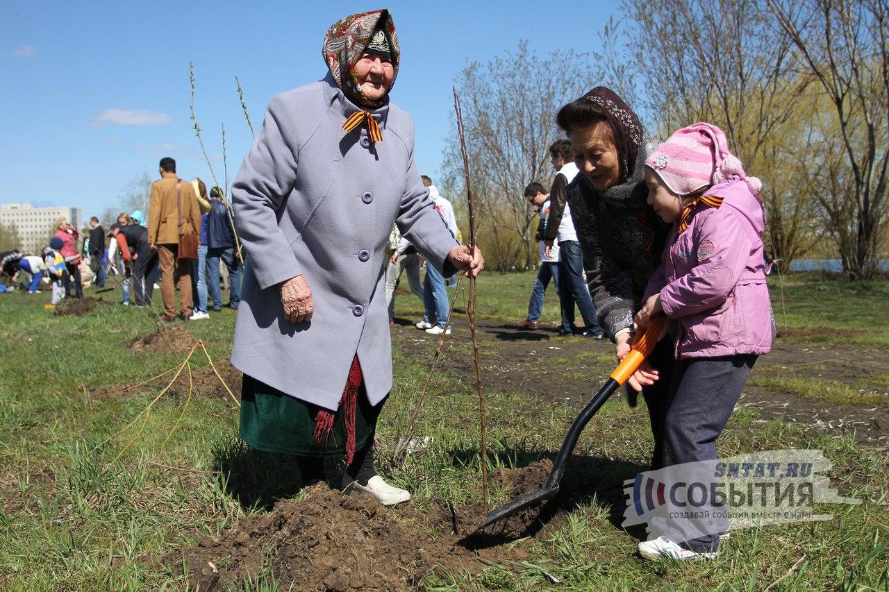 Акция «День посадки леса» стартует 1октября