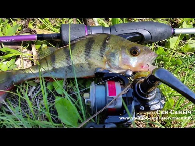 Polaris от Crazy Fish. Что ловится и что можно поймать Рыбалка на спиннинг