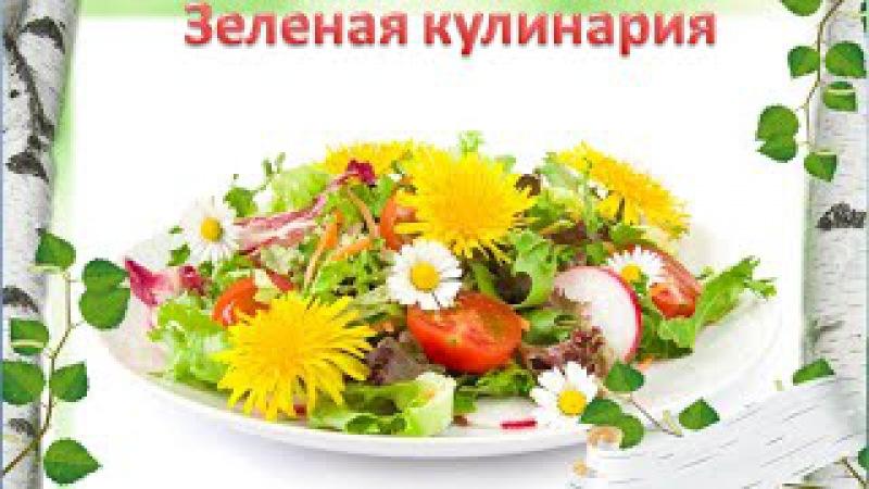 Зеленая кулинария: полезное вкусно   Рецепты вкусных блюд из трав   Зеленые кокте...