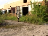 Страна мухоморов (The Fly Agarics land) 2-ая серия