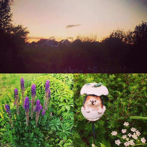 фото из альбома Екатерины Катиной №4