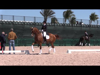 Catherine Haddad and Hotmail in the Warm Up - Week 7