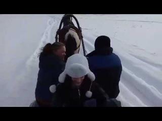 обкадка саней под пение птиц))