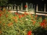 Луцьк 1985 рк 900 рокв (документальне нме кно)