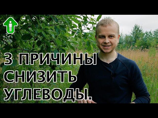3 причины снизить углеводы | Ярасту ru
