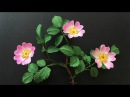 ABC TV How To Make Wild Rose Paper Flower From Crepe Paper - Craft Tutorial