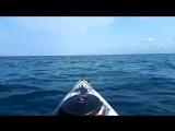 Каяк в черном море