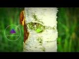 Vincent - Breathe (Maazel &amp Facade Remix)