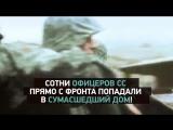Тайны Чапман 9 июня на РЕН ТВ