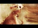VALERIE DORE  - The Night,  Get Closer,  It's so Easy  -  original voice,  Dora Carofiglio