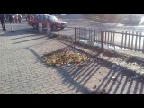В Селидово торгаши оставили на дороге хороший перец!