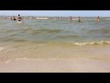 anastezia_i video
