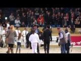 Norbert 444 and Beart 411/Stallion show Leeuwarden 2012