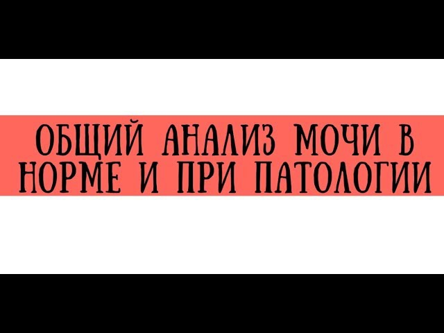 ФВД (спирометрия) показатели в норме и при патологии - meduniver.com