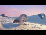 Короткометражный Мультфильм | Сохраним природу