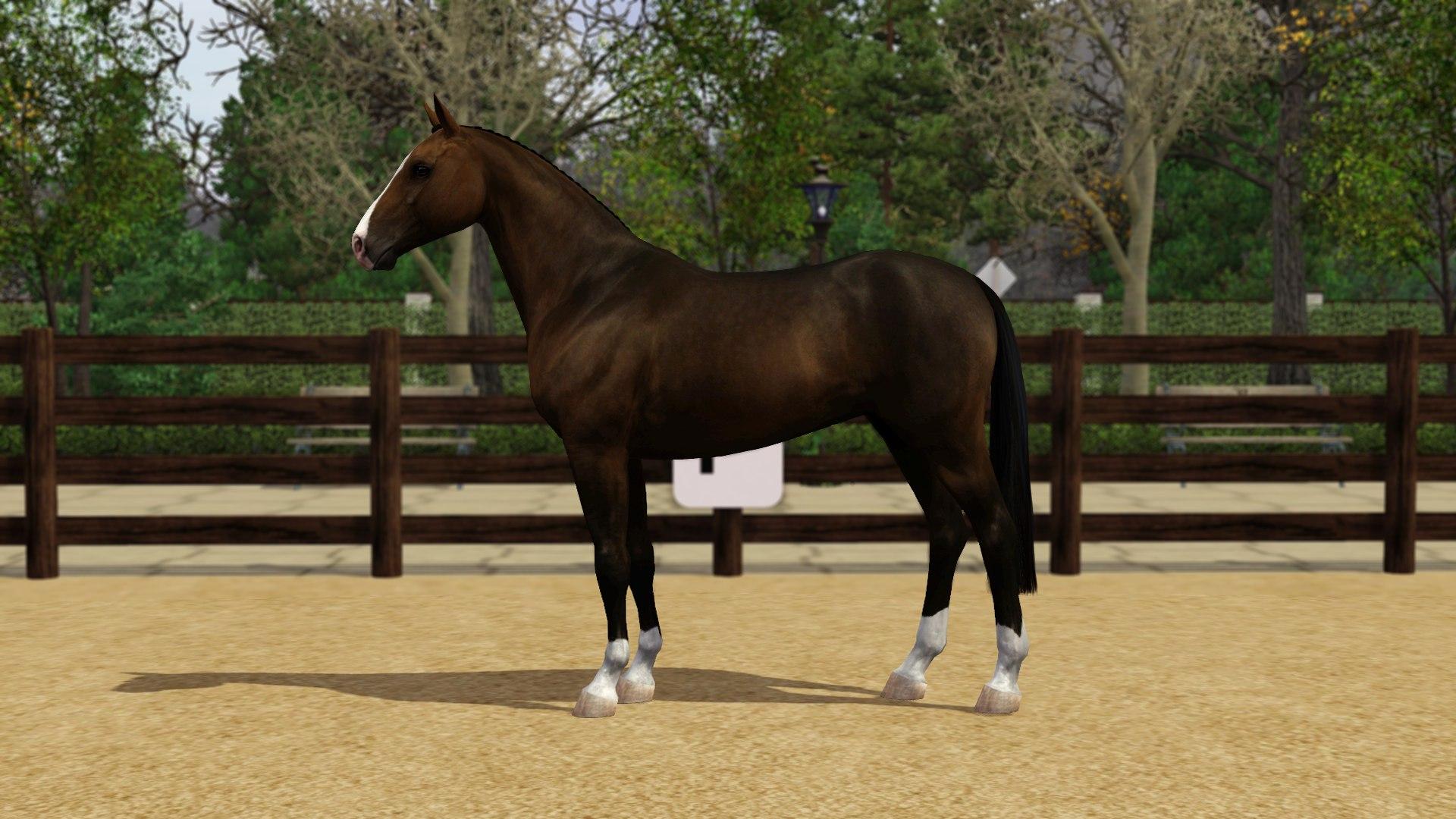 Регистрация лошадей в RHF 2 - Страница 3 XtQ4jgi1kJQ