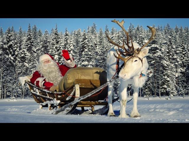 Père Noël et les rennes : l'interview exclusive du Papa Noël à Pello en Laponie Finlande