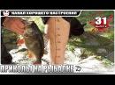 ПРИКОЛЫ НА РЫБАЛКЕ! Супер рыбалка! Мега ржака 31