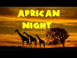 African Nights - 2 Hours Easy Listening Background Music