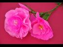 Jak zrobić kwiatek z bibuły - eustoma DIY How to make crepe paper flower
