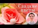 Цветы из сахарной мастики от сладкого декоратора Анны Потаповой мастер класс лепка из мастики