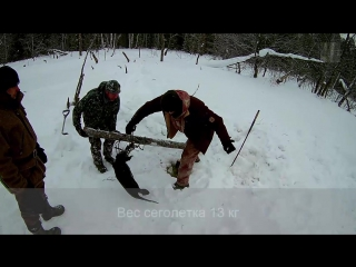 Охота на бобра капканами зимой | 10 советов
