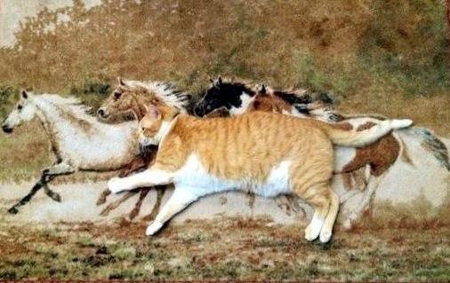 Лето лошади Байкал