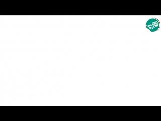 Панин с собакой оригинал видео без ретуши