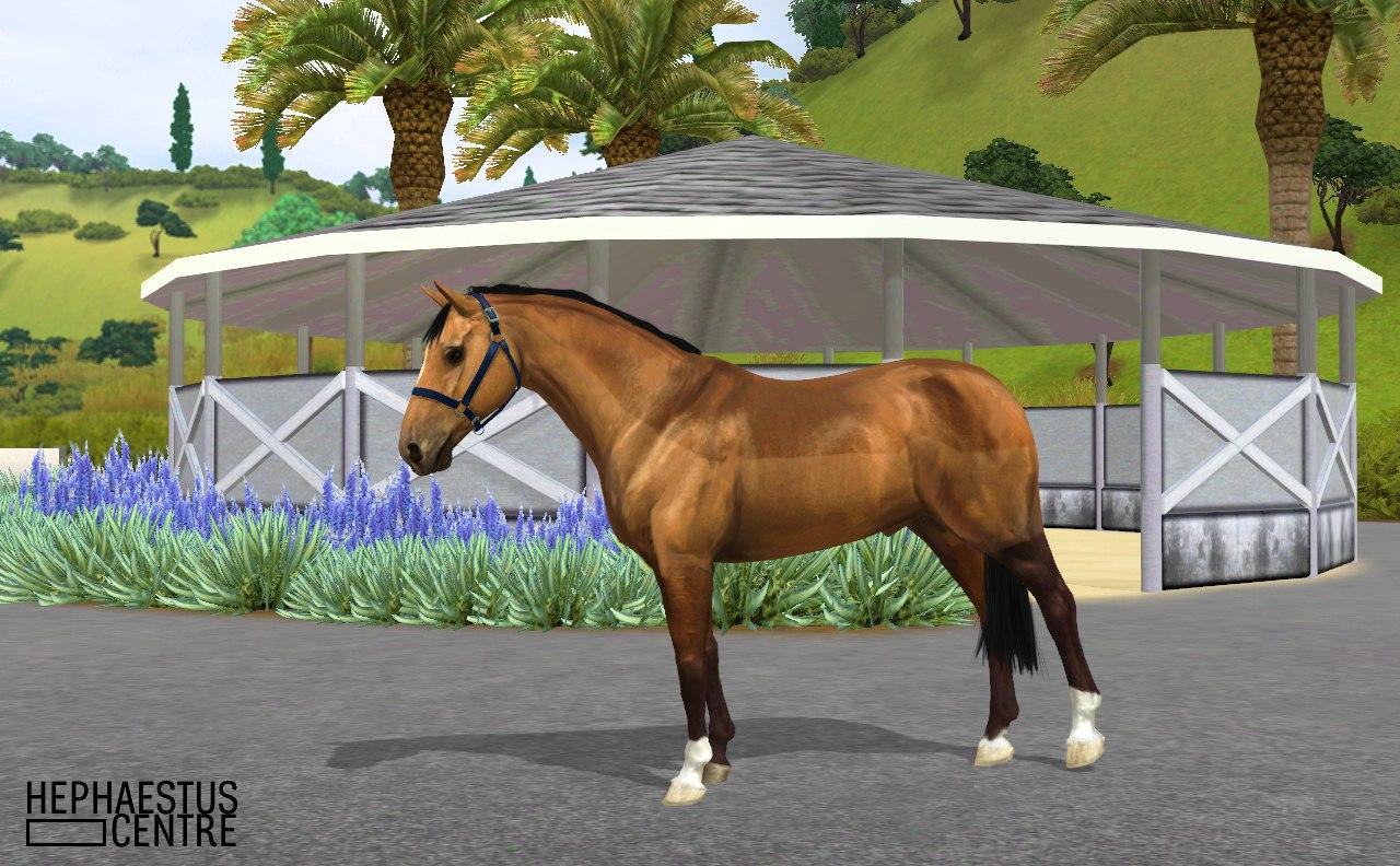 Регистрация лошадей в RHF 2 - Страница 3 D1mPQlDhoW0