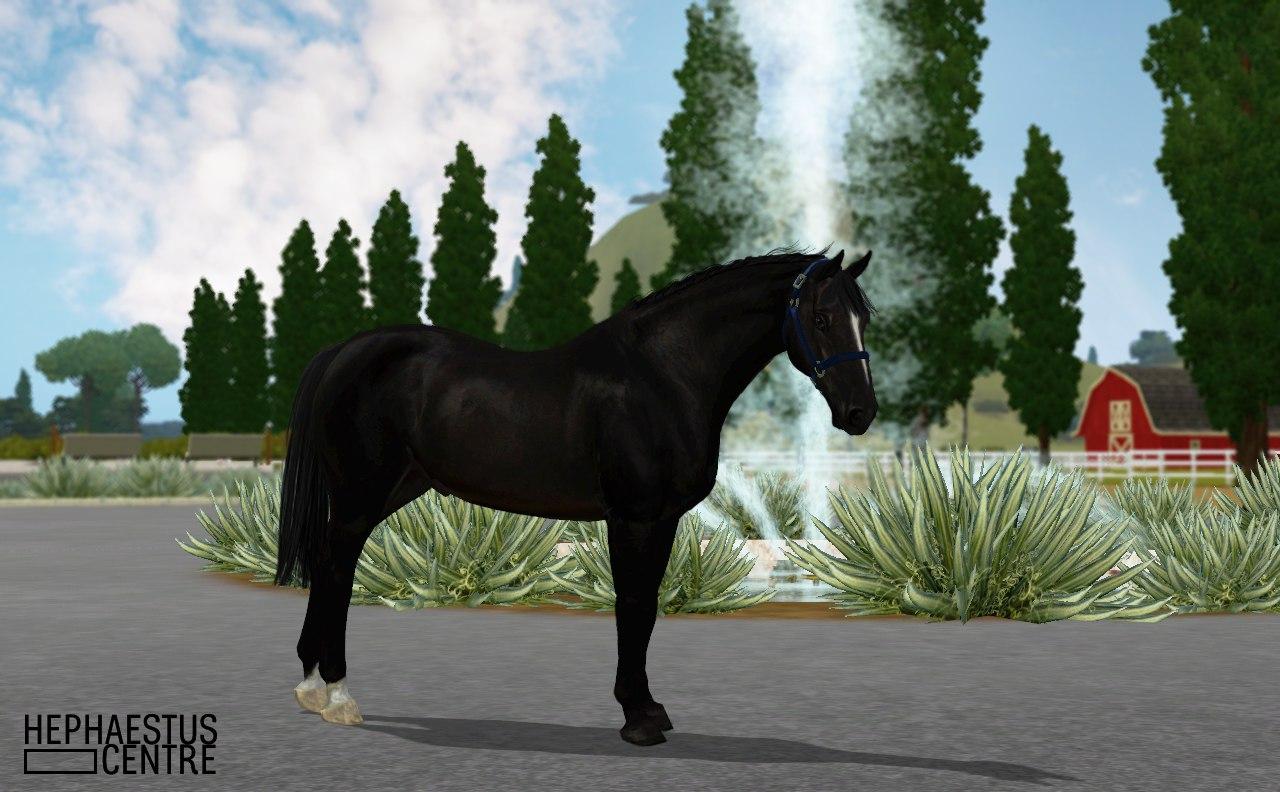 Регистрация лошадей в RHF 2 - Страница 3 L8J9bZ09_pw