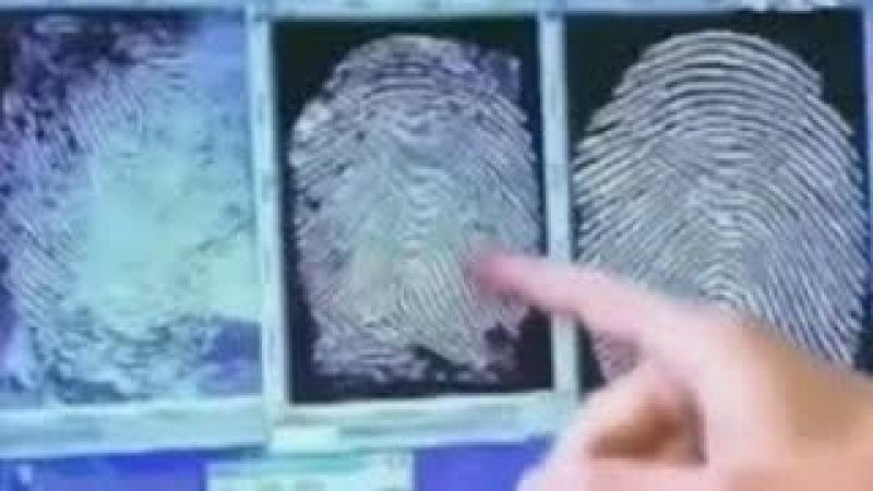 Биометрические паспорта назад возврата нет! Олег Щербанюк