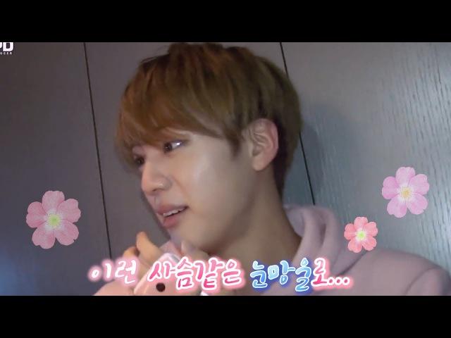 BTS (방탄소년단) 동네어깨형 김석진 체험하기 2탄 (신생아) BTS Jin eng sub