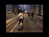 The Skateboarding Bulldog..!! meet buddha Cutest BullDog Ever