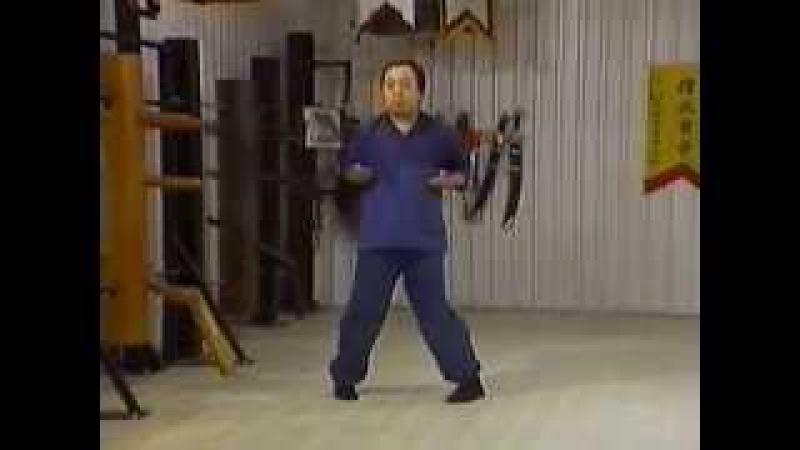 Вин Чун Кунг фу мастера Фонга 3 Форма ЧАМ КИУ 2 Wing Chun Kung Fu Form CHUM KIU