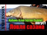 Рыбалка Ловля сазана и карпа на Кубани-Азов-хутор Садки (август)