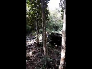 Koh Chang - Водопад
