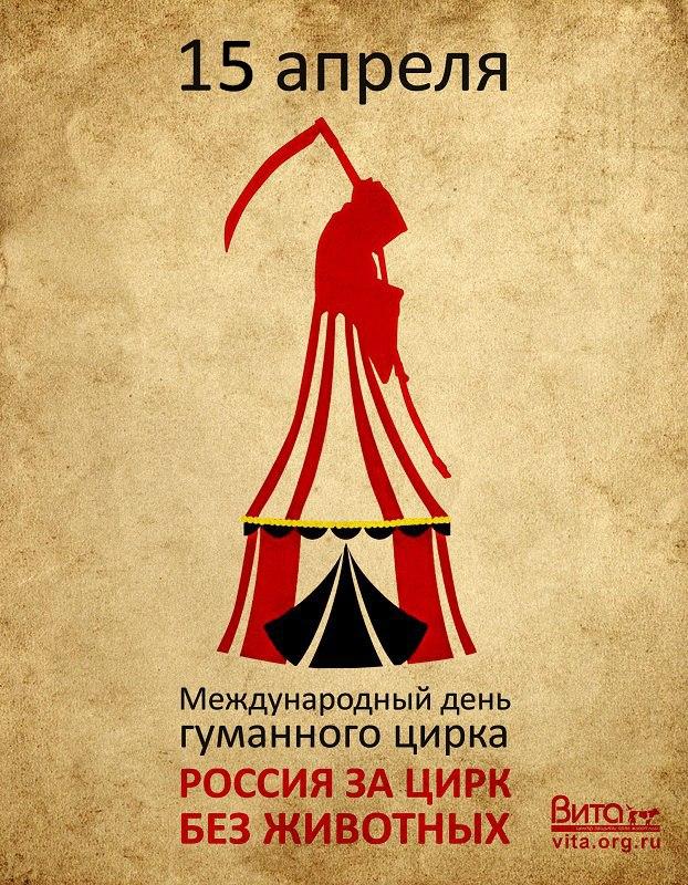 Афиша Челябинск Жители Челябинска - за гуманный цирк