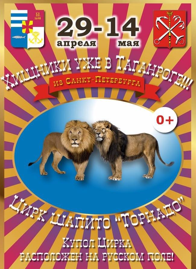 В Таганроге в отношении хозяина цирка «Торнадо» составили протокол за нарушение правил благоустройства
