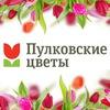 Пулковские цветы