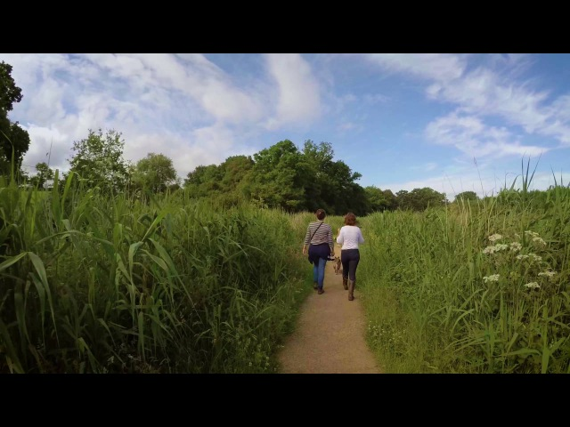 🎥 4K Virtual nature walk Droitwich Canal Worcestershire England Slow TV Full video