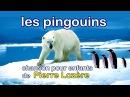 Les pingouins de Pierre Lozère - Французский язык для детей