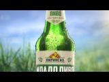 Пиринско Младо Пиво 2017